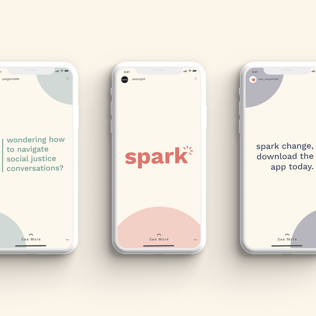 Spark Campaign