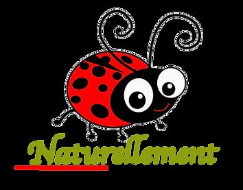logo fd transparent.png