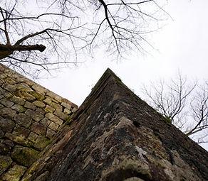 2011.01.11.singu castle.jpg
