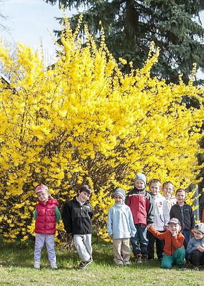 Škola, školka, mateřská, základní, borek, České Budějovice, děti, dítě, vycházka