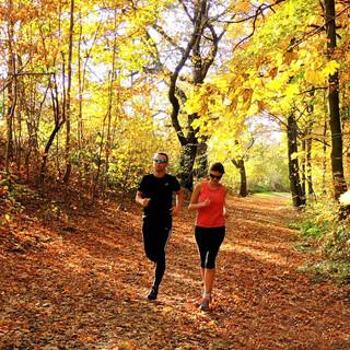 Bežci na cyklostezce Hlincová Hora Kodetka - podzim, barevné listí, běh.jpg