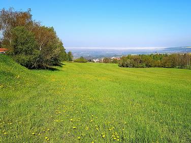 Bydlení blízko přírodě - Kodetka, Hlincová Hora, České Budějovice