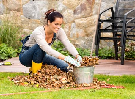 Co musíte udělat na podzim pro svou zahradu?