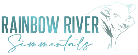 RainbowRiverLogo_Blue with no background