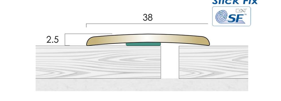 CAT Brass Flooring Profiles BC38 SF
