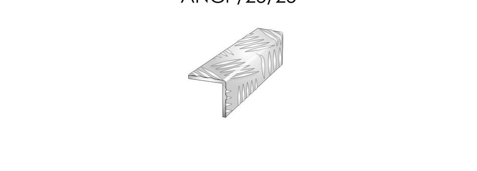 ANCP25-25