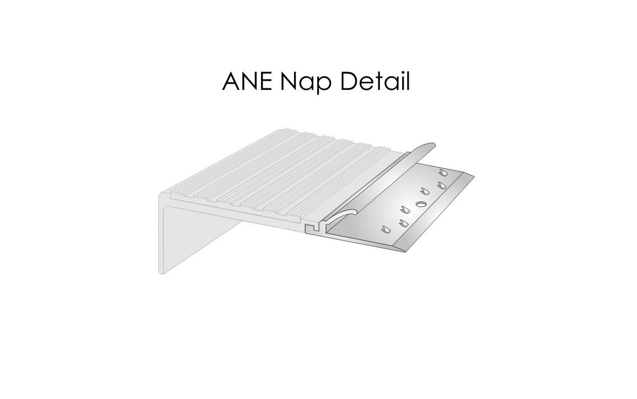 ANE Nap Detail