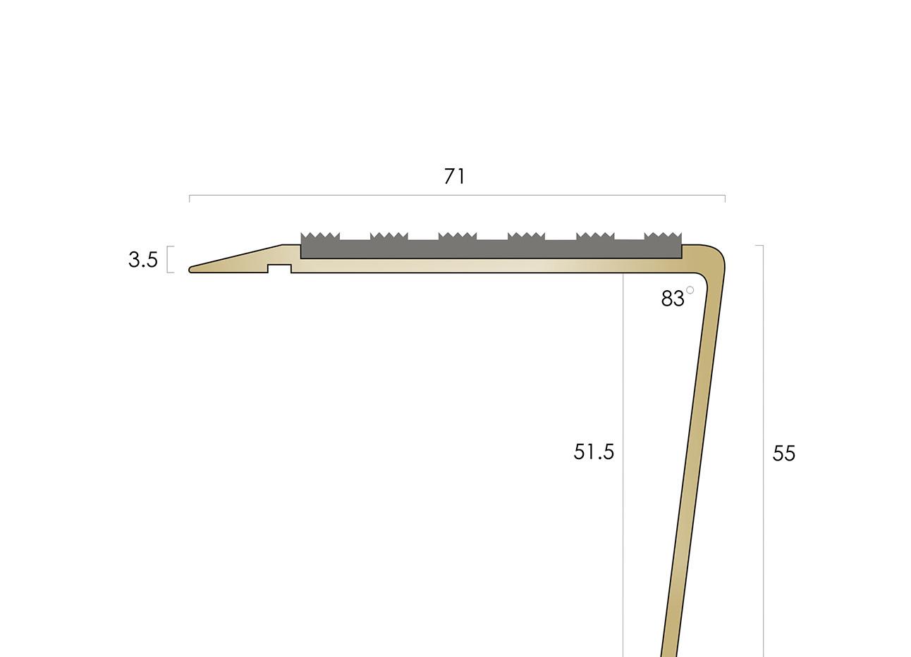 CAT Brass Nosing BN71-55 SLR-R