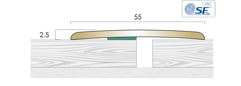 CAT Brass Flooring Profiles BC55 SF