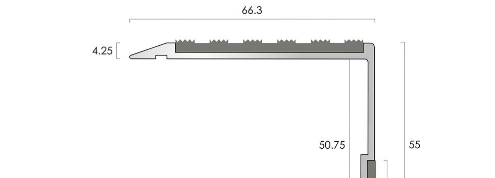 CAT Aluminium Nosing AN15-55-13