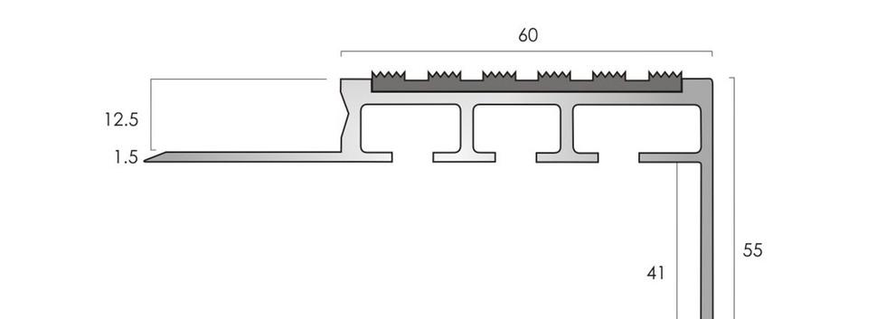 CAT Aluminium Nosing ANT60-55-12.50
