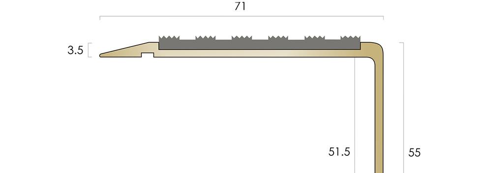 CAT Brass Nosing BN71-55 SLR