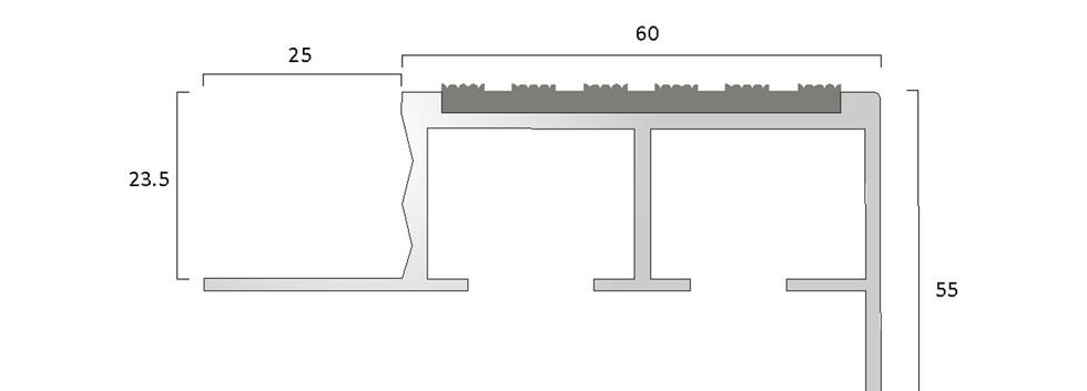 CAT Aluminium Nosing ANT60 55