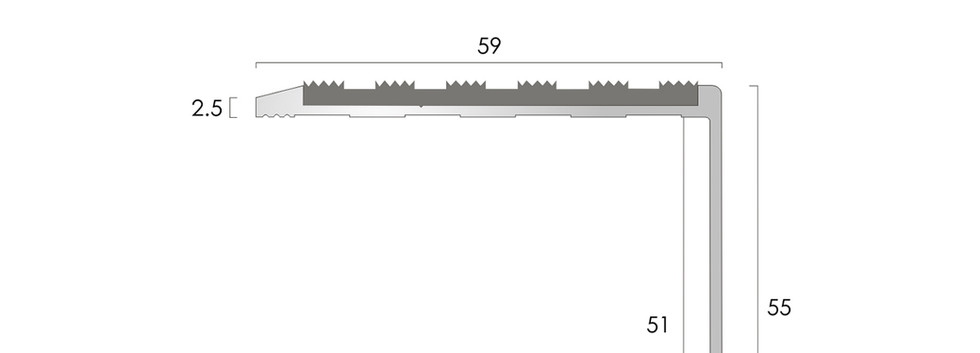 CAT Aluminium Nosing AN59-55