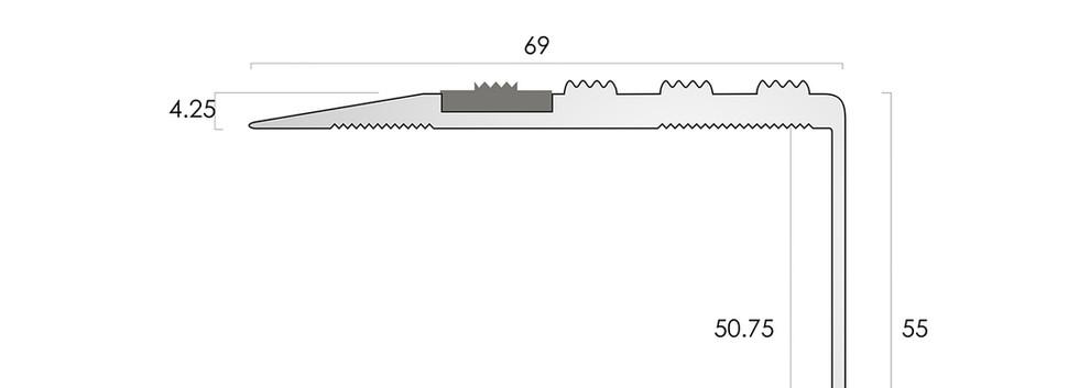 CAT Aluminium Nosing AN70 55CF