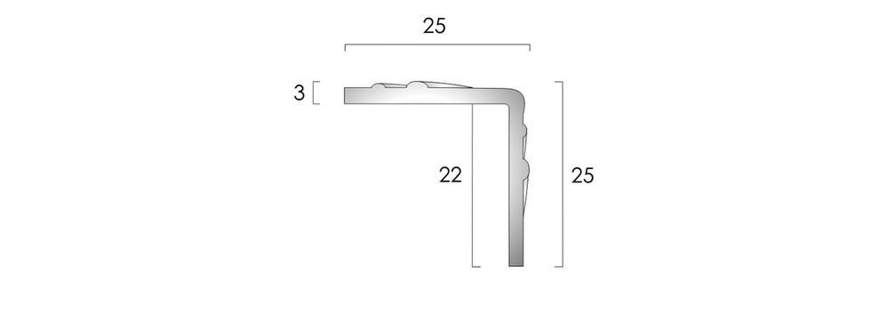 CAT Aluminium Nosing ANCP25 25