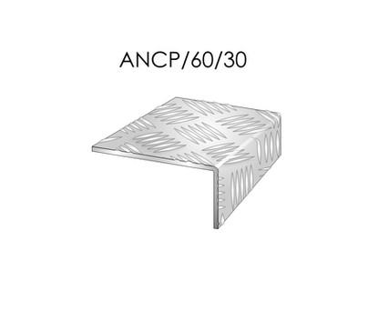 ANCP60-30