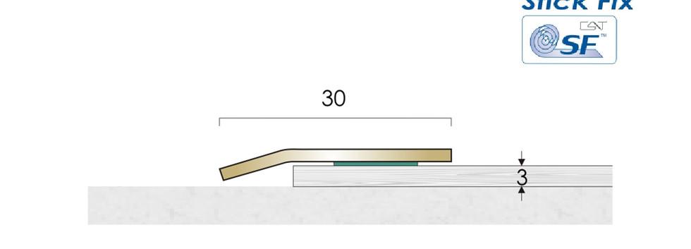 CAT Brass Flooring Profiles BLE2 SF