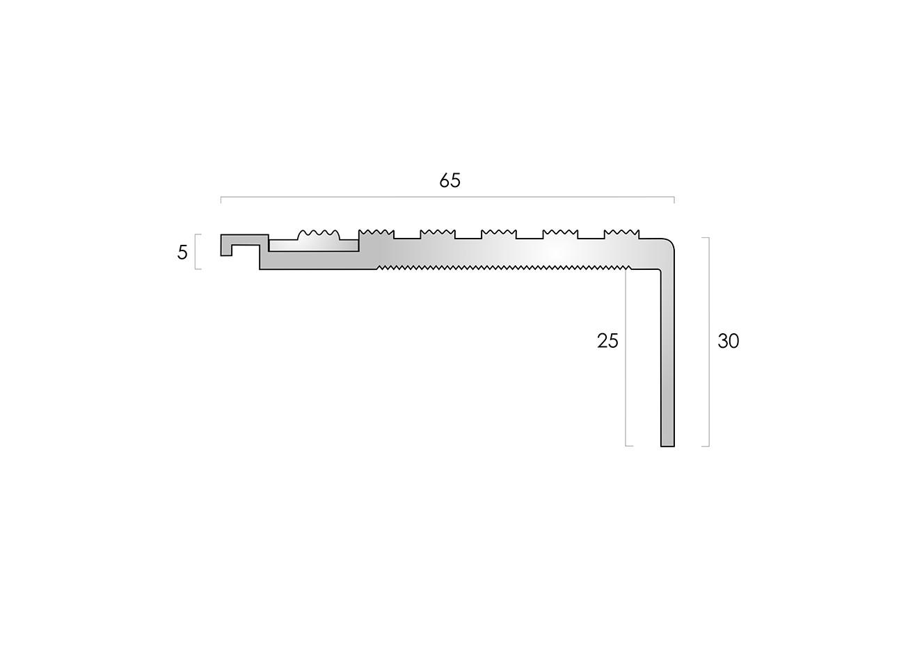 CAT Aluminium Nosing AN65-30 CF