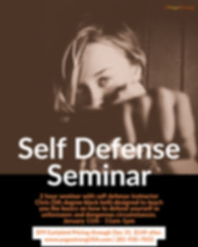 sd seminar3.jpg