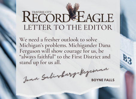 'We need a fresher outlook to solve Michigan's problems' –LTE