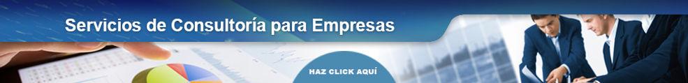 Servicios de Consultoría para Empresas