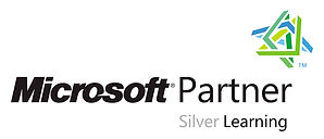 LO MS Silver Partner.jpg
