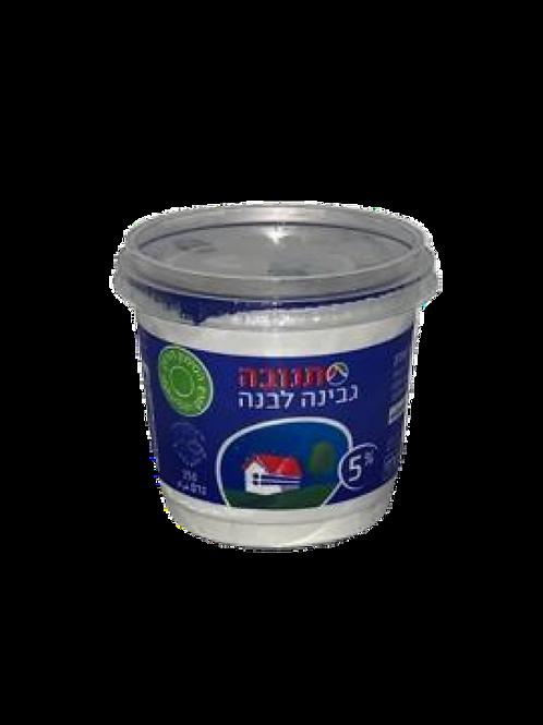 גבינה לבנה 5% 250 גרם
