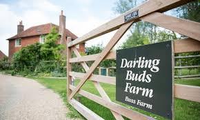 The Darling Buds Farm
