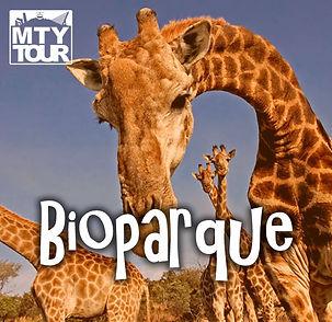 Icono_Bioparque.jpg