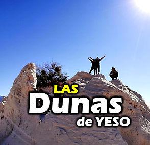 DUNAS icono.jpg