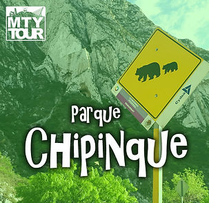 Chipinque