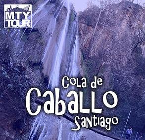 Icoo_Cola de Caballo.jpg