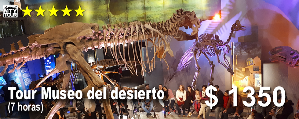 Museo desierto.png