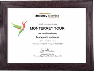 Manejo de Visitantes_MTY TOUR.jpg