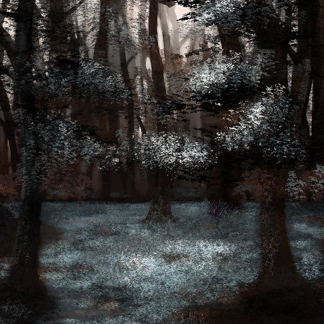 Silver Forest.jpg