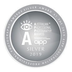 AIPP Awards Badge 2019 (31) S.png