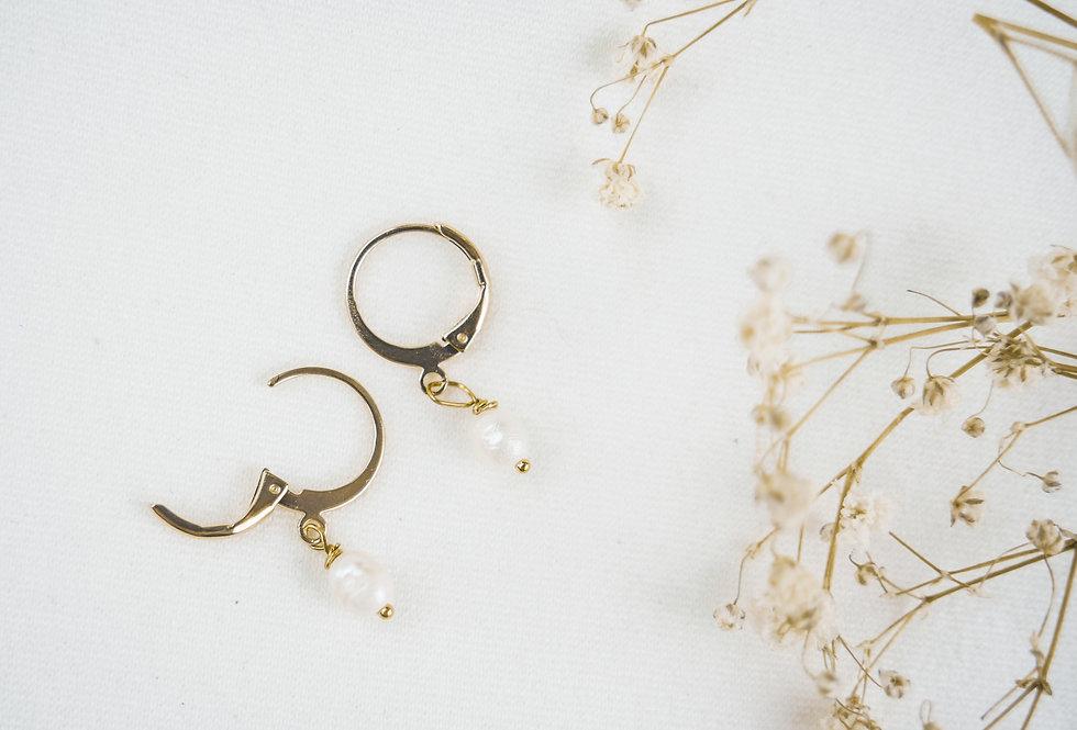 Boucles EMMA - NACRE - OR