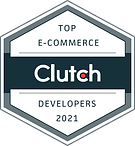 E-CommerceDevelopers_2021.png