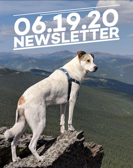 Cairn Guides Newsletter Launch!