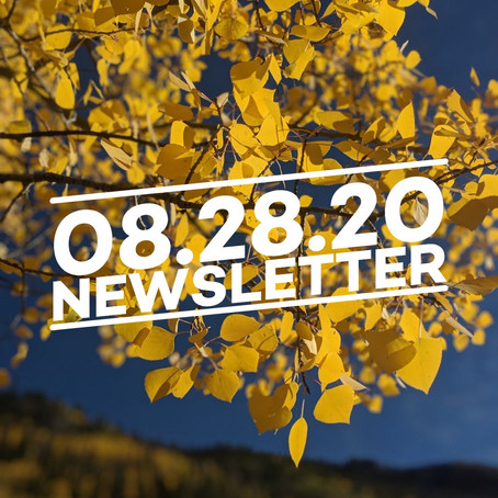 08.28.20 Cairn Guides Newsletter