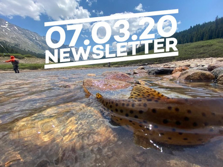 07.03.20 Cairn Guides Newsletter