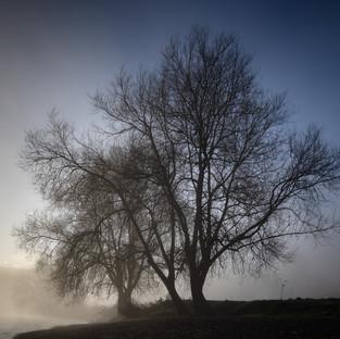 The Warren – Hay on Wye