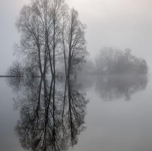 Llangorse in Flood