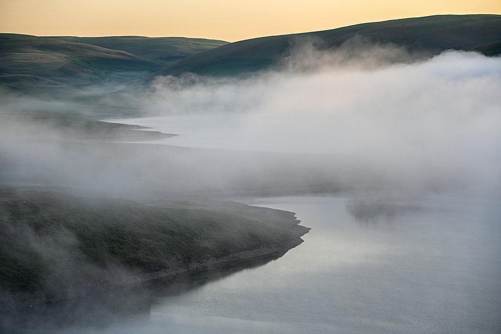 Misty Morn.jpg