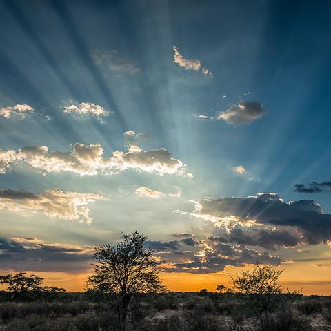 Sun up Nossob.jpg