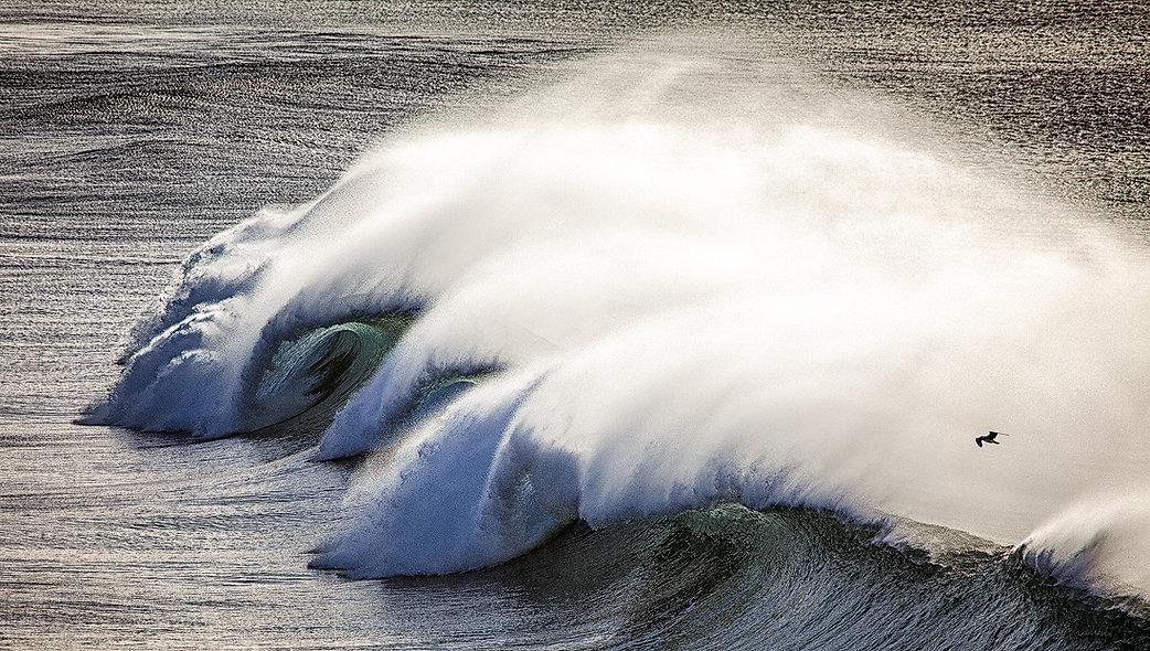Wave-Rider.jpg
