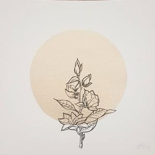 Serie: Línea de Flores