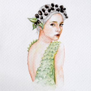 Serie Chachafrutas: Juanábana