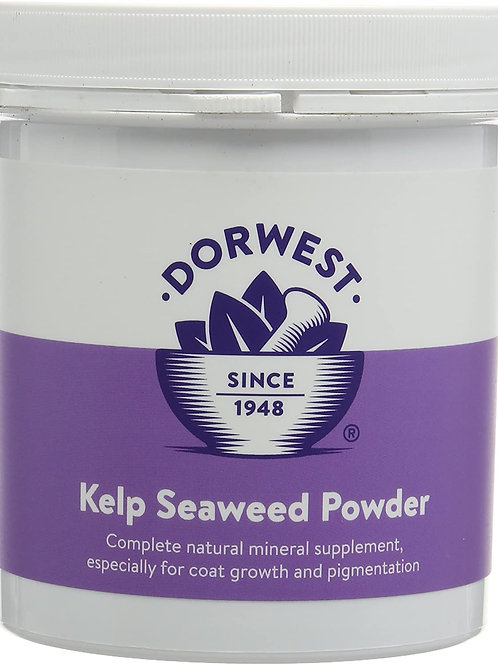 Dorwest Kelp and Seaweed Powder for Dogs and Cats - 250g